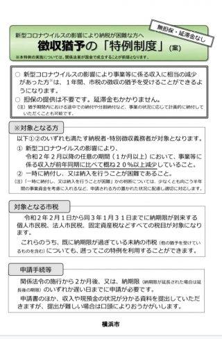 徴収猶予の「特例制度」(案).jpg